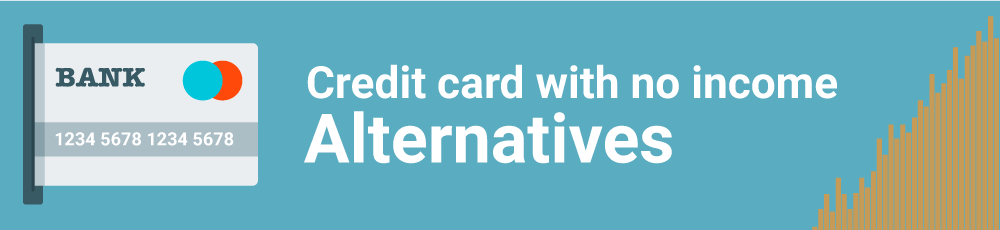 Credit Card with No Income Proof